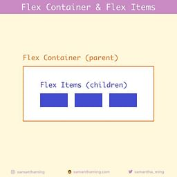 Flex Container & Flex Items