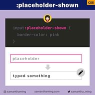 CSS :placeholder-shown